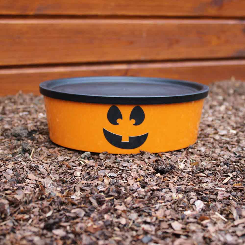 Big Bruno Halloween Edition